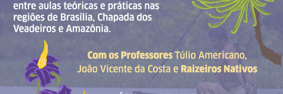 Fitoterapia Brasileira e Aromaterapia – Inscrições abertas!